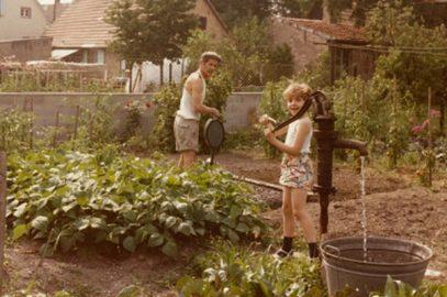 Cultiver, cuisiner: un amour d'enfance
